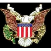 SEAL OF THE USA EAGLE CUTOUT PIN
