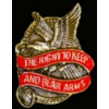 USA EAGLE RIGHT TO KEEP AND BEAR ARMS PIN SECOND AMENDMENT PIN DX