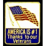 THANKS TO OUR VETERANS PIN USA FLAG PIN DX