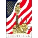 STATUE OF LIBERTY USA UNITED STATES FLAG PIN