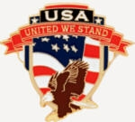 USA EAGLE PIN UNITED WE STAND PIN
