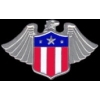 EAGLE SHIELD USA WING PIN