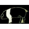 PIG PIN BLACK AND WHITE HAMPSHIRE PIG PIN