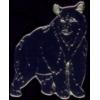 BLACK BEAR PIN STANDING