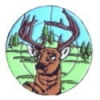 DEER IN THE SCOPE PIN