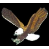 EAGLE WINGS UP MEDIUM PIN
