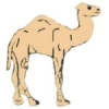 CAMEL PIN DROMEDARY OR ONE-HUMPED CAMEL PIN