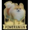 POMERANIAN PIN PHOTO STYLE DOG PIN