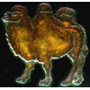 BACTRIAN CAMEL PIN