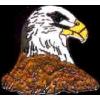 EAGLE HEAD SIDE PROFILE PIN