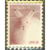 ARTIC HARE STAMP PIN DX
