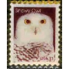 SNOWY OWL STAMP PIN DX PIN