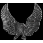 EAGLE PIN WINGS OUT LARGE CAST EAGLE PIN