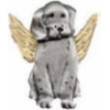 DOG PIN GUARDIAN ANGEL PIN DX