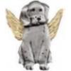 DOG PIN GUARDIAN ANGEL PIN DX