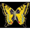 SWALLOWTAIL BUTTERFLY VERSION 2 PIN