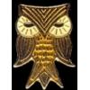BIG EYES OWL PIN