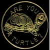 TURTLE PIN ARE YOU A TURTLE PIN