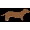 DACHSHUND PIN BROWN DOG PIN