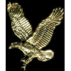 EAGLE WINGS UP GOLD LARGE PIN