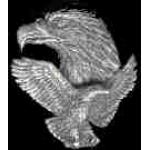 EAGLE FLIGHT AND HEAD CAST PIN
