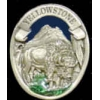 YELLOWSTONE BUFFALO PEWTER PIN