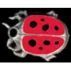 LADY BUG SMALL COLORED CAST PIN