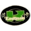 KAWASAKI PIN MOTORCYCLE OVAL KAWASAKI PIN