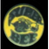 DODGE CHARGER SUPER BEE RD LOGO PIN