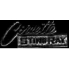 CHEVROLET CORVETTE STINGRAY BAR SCRIPT PIN