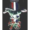 FORD MUSTANG 1973 YEAR LOGO PIN