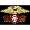 HONDA GOLDWING LOGO SM PIN
