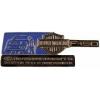 HARLEY DAVIDSON PIN FORD F-150 PIN