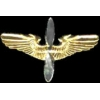 AVIATION PILOT PIN CADET PILOT MINI WINGS PIN