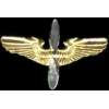 AVIATION PILOT PIN CADET PILOT WING LARGE PIN