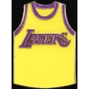 LOS ANGELES LAKERS TEAM JERSEY PIN