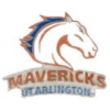 U TEXAS ARLINGTON PIN MAVERICKS UNIVERSITY OF TEXAS AT ARLINGTON PRIMARY LOGO PIN