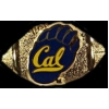 U CALIFORNIA BERKELEY GOLDEN BEARS FOOTBALL PIN