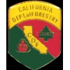 CALIFORNIA DEPT OF FORESTRY PIN CDF PATCH MINI PIN
