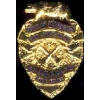 LOS ANGELES COUNTY, CA FIRE DEPT BATTALION CHIEF MINI BADGE PIN