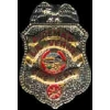 LA VERNE, CA FIRE DEPT FIREFIGHTER MINI BADGE PIN