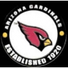 ARIZONA CARDINALS PIN ESTABLISHED YEAR CARDINALS PIN