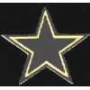 DALLAS COWBOYS SILVER AND GOLD PIN