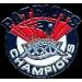 NEW ENGLAND PATRIOTS SUPER BOWL 39 CHAMPION ROUND PIN