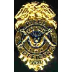 PIECE OFFICER BADGE PIN DX