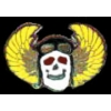FLYING SKULL JUMP WINGS PIN SKULL WING HAT PIN LAPEL PIN