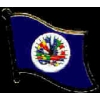 ORGANIZATION OF AMERICAN STATES PIN OAS FLAG PIN DX