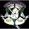 ANAHEIM MIGHTY DUCKS GAME ON PIN