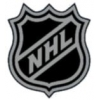 NATIONAL HOCKEY LEAGUE PIN LOGO BLACK SILVER NHL PIN