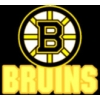 BOSTON BRUINS LOGO AND WORD PIN